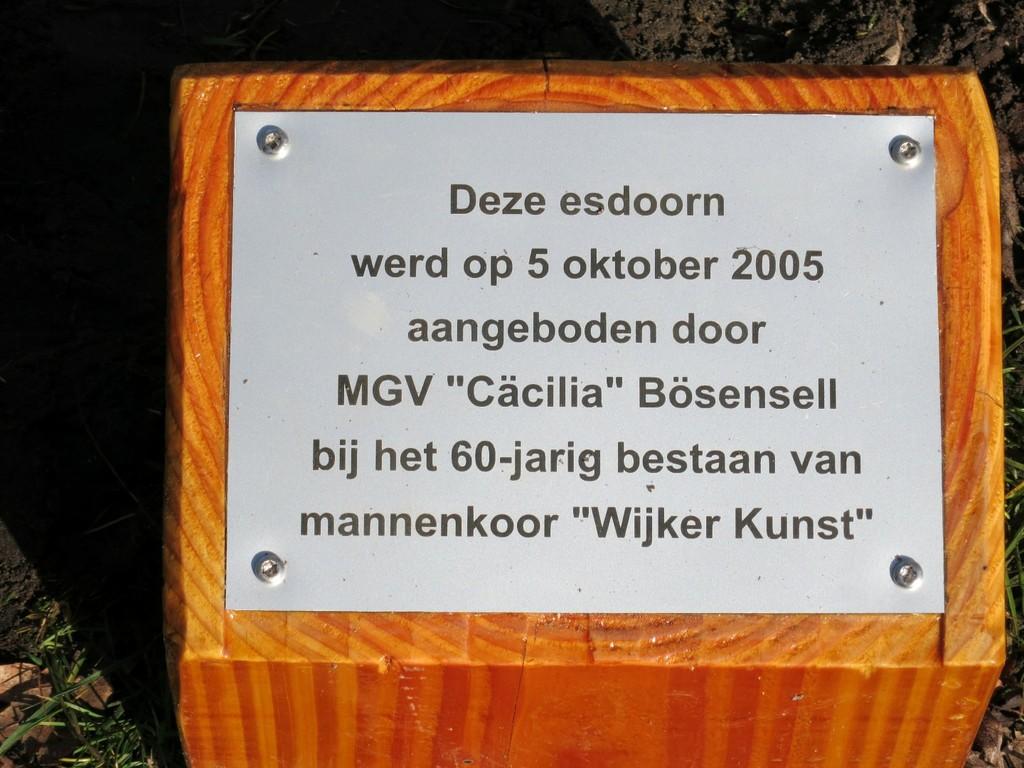 0011Bösensellboom